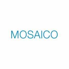 PON F3- Einaudi – progetto Mosaico