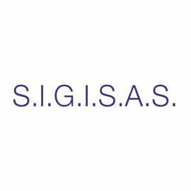 S.I.G.I.S.A.S. - Sistema Informatizzato Gestione Integrata dei Servizi Socio - Assistenziali e Sanitari